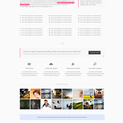 Devine – Responsive One Page WP Theme 49 Mojo