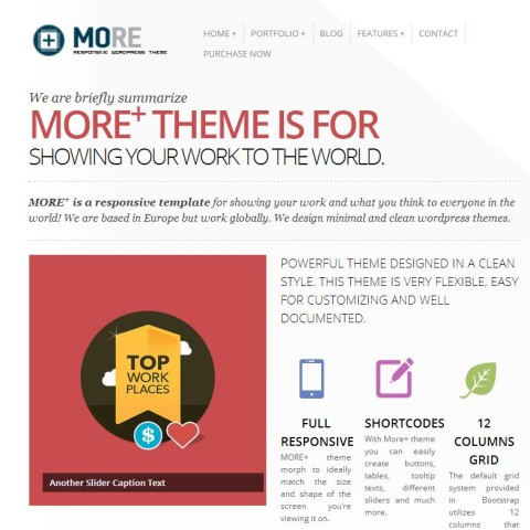 More+ Responsive Wordpress Theme 39 Mojo