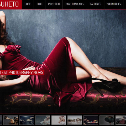 Suheto Wordpress Theme 49 Mojo